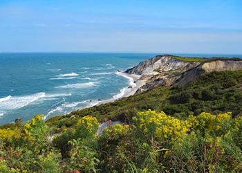 The Rock and The Ring - Martha's Vineyard Trip
